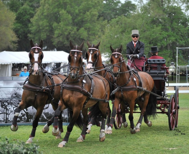 It's All About Teamwork:  Chester Weber and Live Oak International