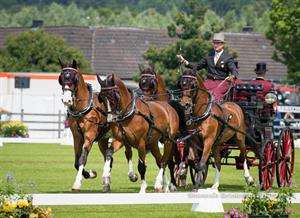 U.S. Driving Team and Chester Weber Sit in Second after CAIO4*-H4 Dressage Phase at CHIO Aachen