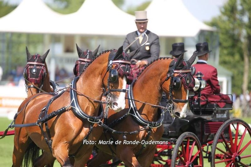 Chester Weber Makes History as First American to Win the Four-in-Hand Division at the CHIO Aachen