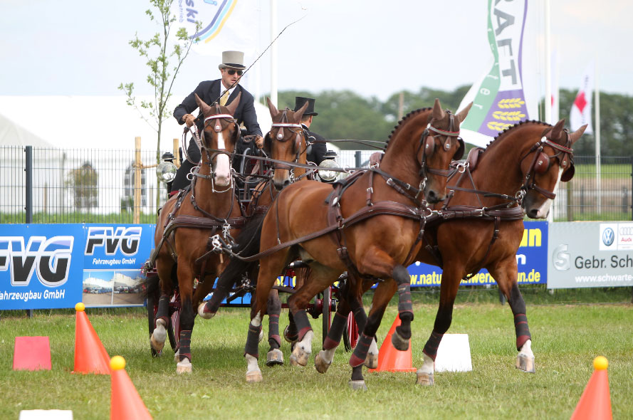 """""""Mr. Dressage"""" Is Back: Chester Weber Begins  European Tour With Success at 2012 CAI Lähden"""