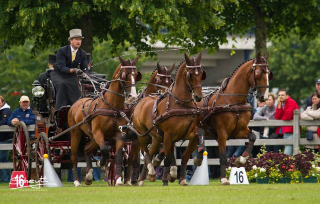 Chester Weber Scores Top 3 Finish at Aachen,  Looks to 2014 World Equestrian Games