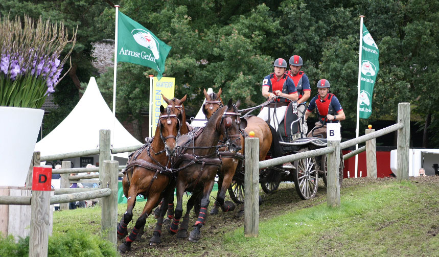 Combined Driver Chester Weber Shuffles the Team at  CAI Beekbergen Winning the Dressage and Finishing in the Top 4 Overall