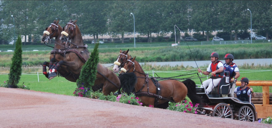 Weber Undefeated in France Following Win in CAI-A4  Caen Test Event for 2014 WEG-Normandy