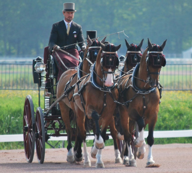 Team Weber Undefeated in Dressage on European Tour