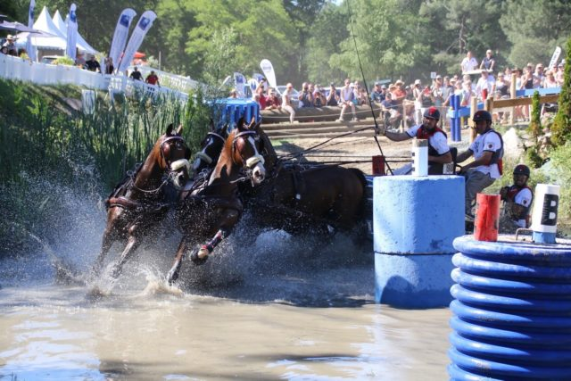 Two Top European Finishes in June For  US National Four-in-Hand Champion Chester Weber