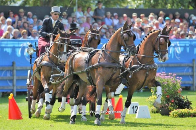 Weber Places Top-Ten Overall at World Equestrian Festival CHIO Aachen