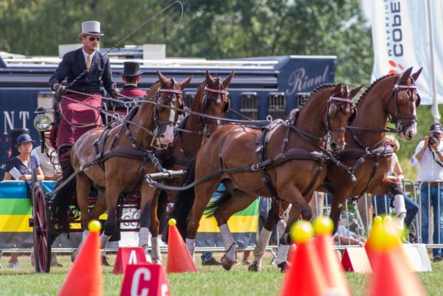 Chester Weber Wins Beekbergen CAI3* to Round Out Successful Summer Tour