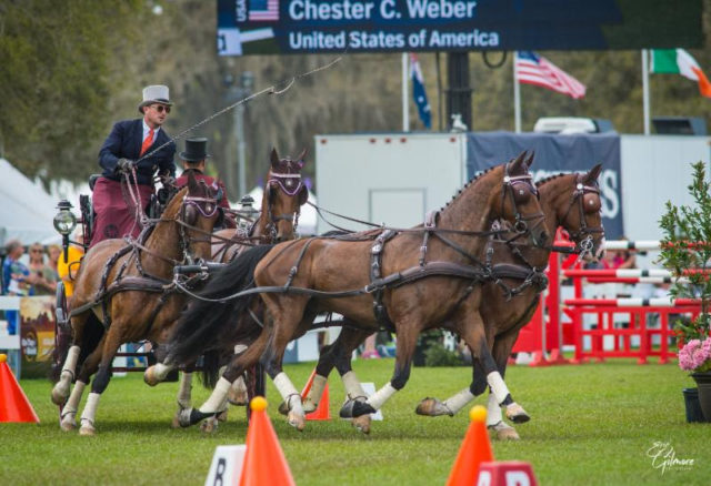 Chester Weber Did What Chester Weber Does Best at Live Oak International