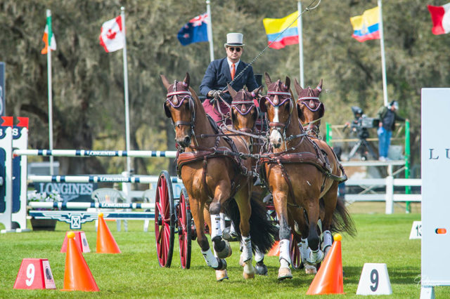 WEBER WINS RECORD 17TH USEF COMBINED DRIVING NATIONAL CHAMPIONSHIP